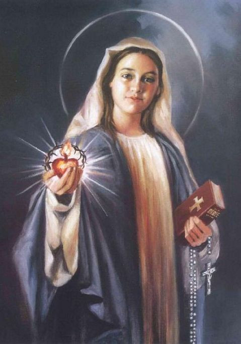 mary-mother-of-god-holding-sacred-heart-bible-rosary-2.jpg
