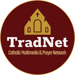 Introducing- TradNet