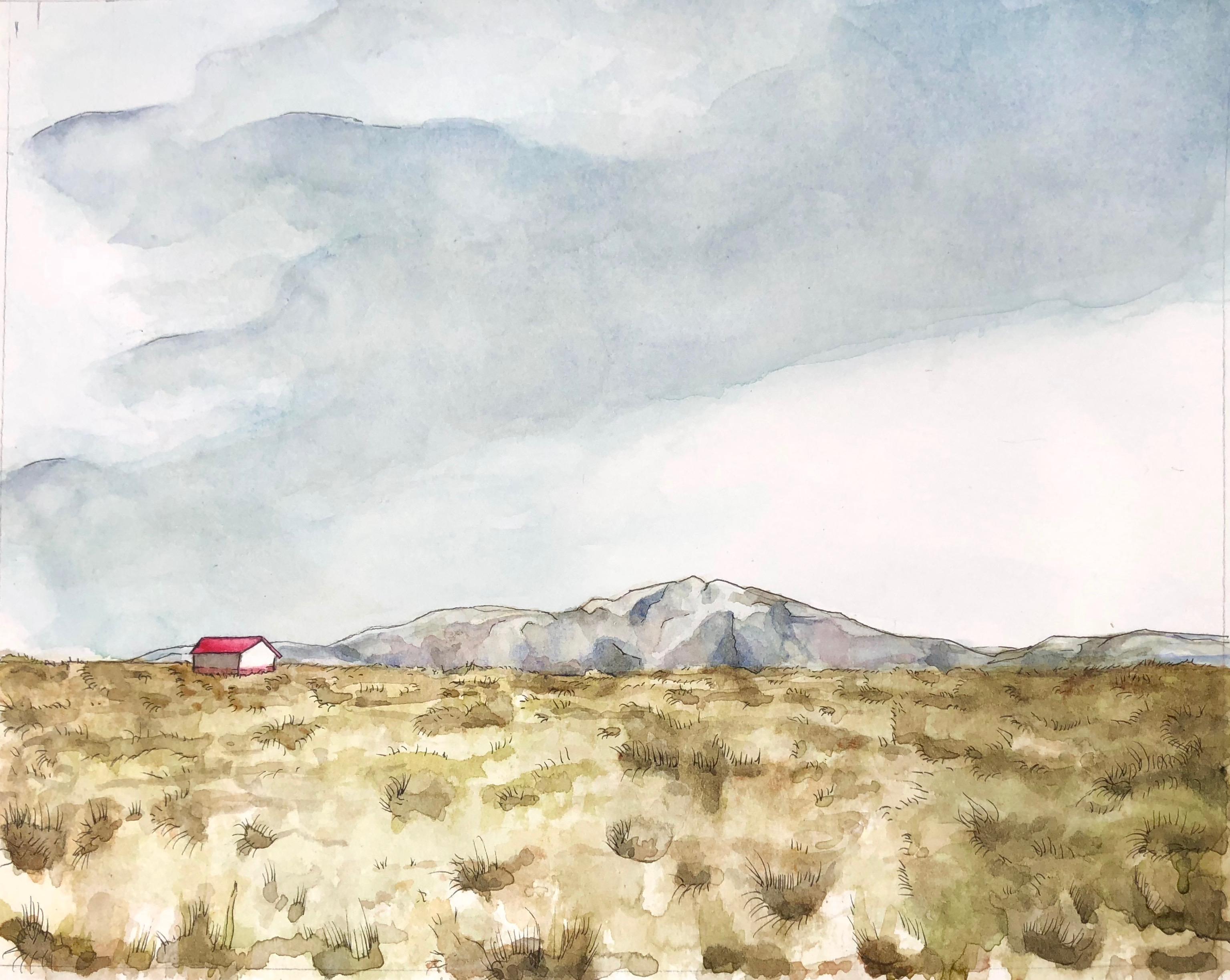 Taos Teal