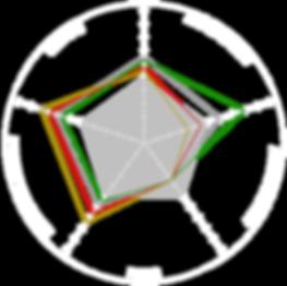 Nashin Brake Pad Range Performance Grid