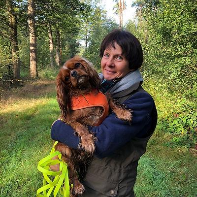 Speuren | Dogs in Mind