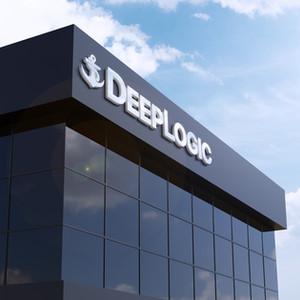 Deep Logic Brand Design