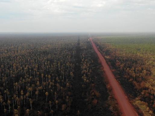 Los incendios en la Amazonía exponen los de Bolivia