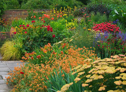 To Do in the Garden in August