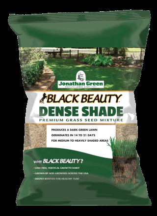 Black Beauty® Dense Shade Grass Seed