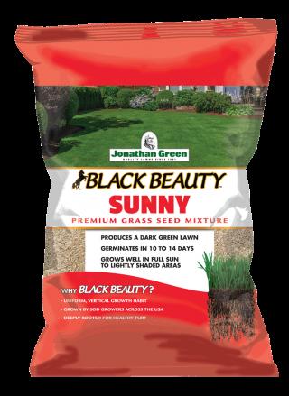 Black Beauty® Sunny Grass Seed