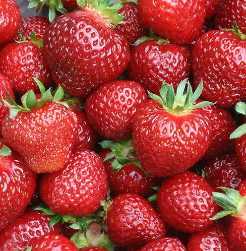 Strawberry / Seascape