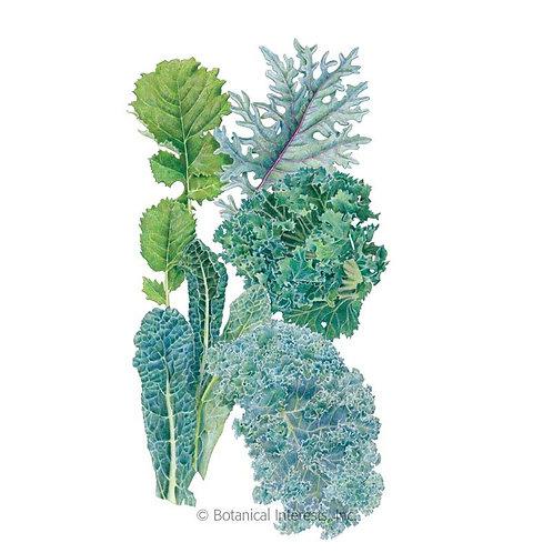 Premier Blend Kale Seeds