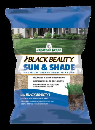 Black Beauty® Sun & Shade Grass Seed