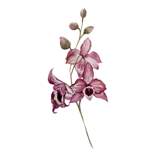 Pink Flowers_edited.png