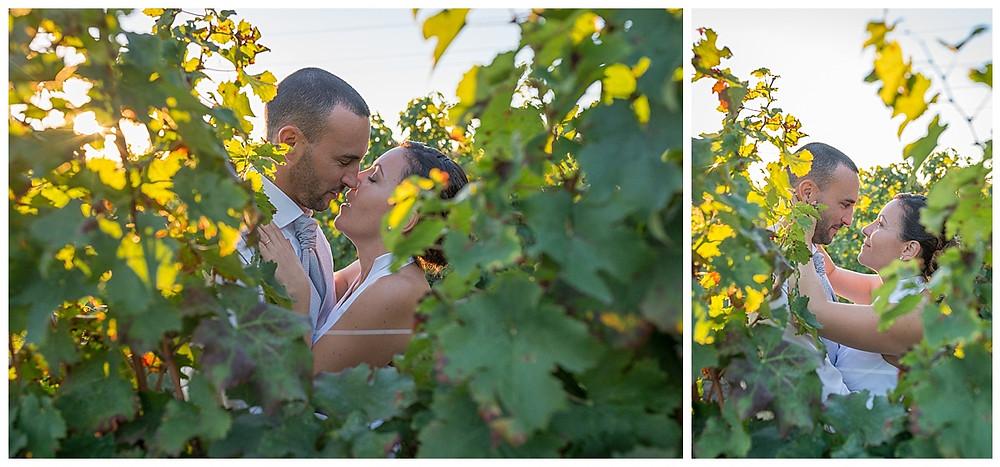 mariés vignes