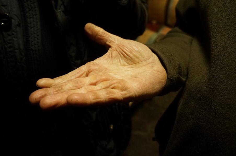 典型的なヴィニュロンの手。硬く、ワインがしみ込んでいる。2012年撮影。