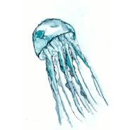 Ink Medusa 22x32  by Kinzi