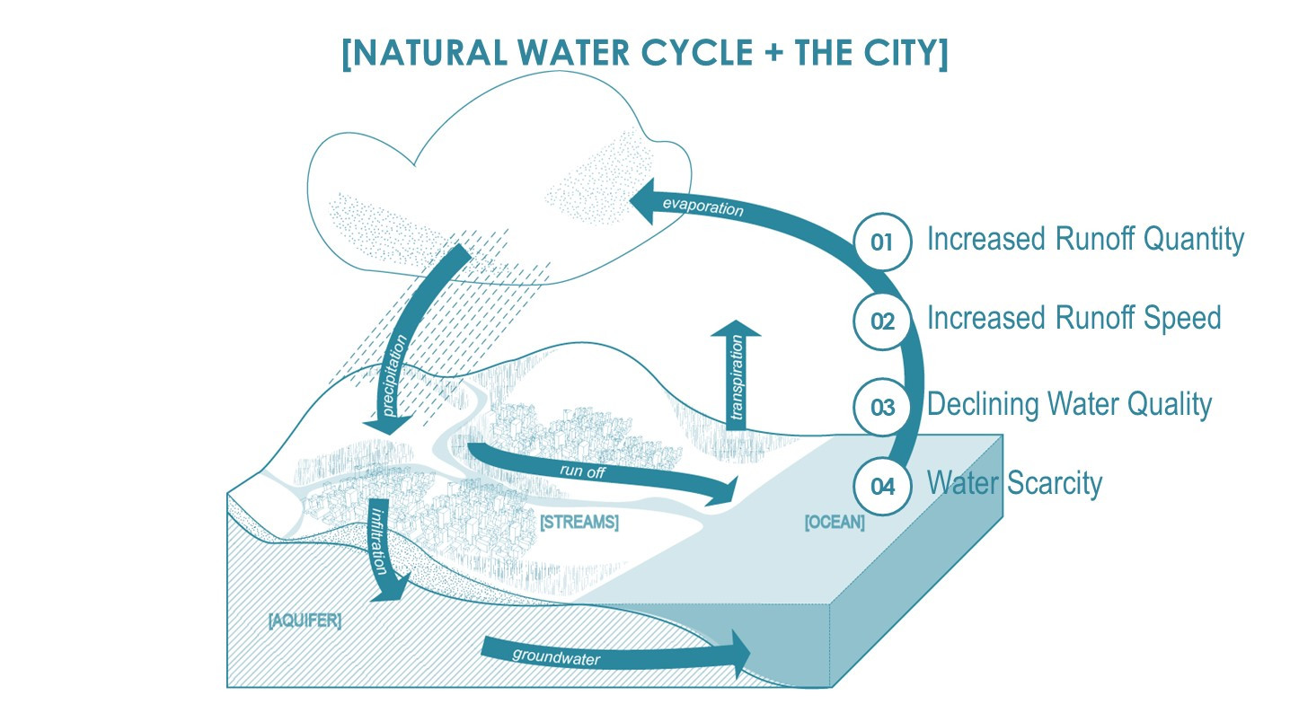 Water cycles & the City