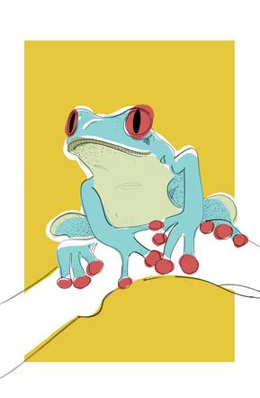 Plants &  animals: Frog