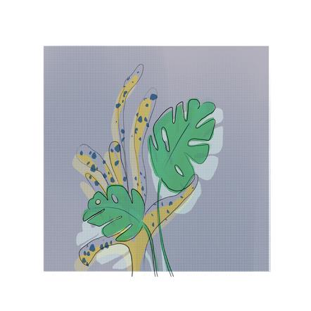 Plants &  animals: Leaves