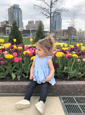 Everly's 23-Month Update