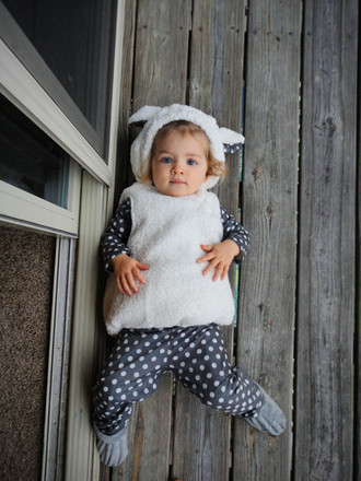 Everly's 18-Month Update