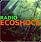 ecoshocjkj.png