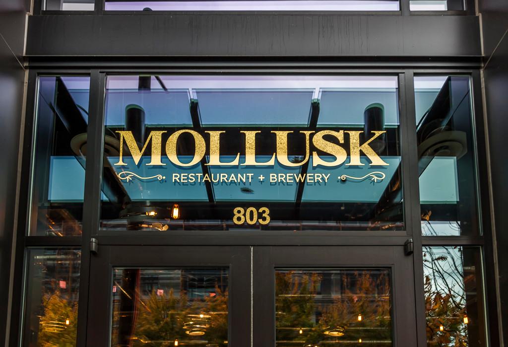 Mollusk 01 exterior 2 s.jpg