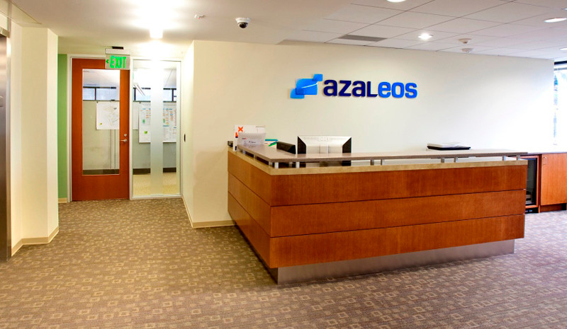 Azaleos 1.jpg
