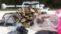 Charter Fishing, scalloping hernando county, Boating Hernando, Hernando Boating, Boating Hernando Beach, Boating Weeki Wachee, Weeki Wachee Tours, River Tours, Island Tours