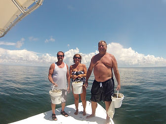 Saltyds scalloping Charters spring hill