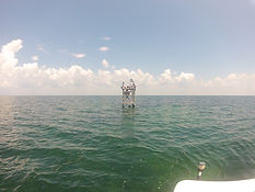 Fishing Charters Bayport, Charter Baots Weeki Wachee, Offshore Fishing Hernando County