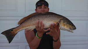 Fishing Chartes  Big Game