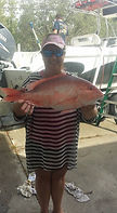 Fishing Hernando Beach,Charter Fishing Spring Hill,Fishing Charters Spring Hill