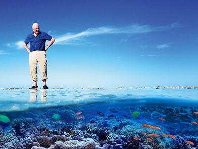 David Attenborough.png