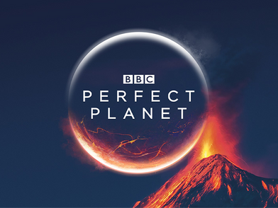 Perfect Planet-2.png