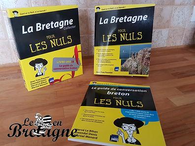 Idée lecture : La Bretagne pour les nuls