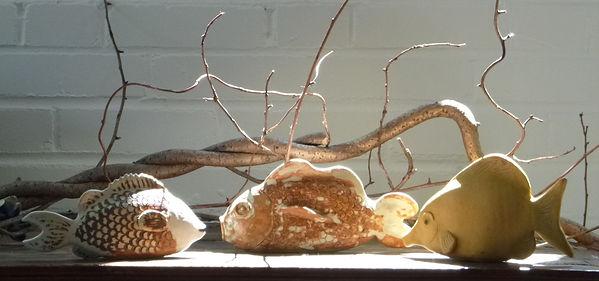 fish 15 fb.jpg