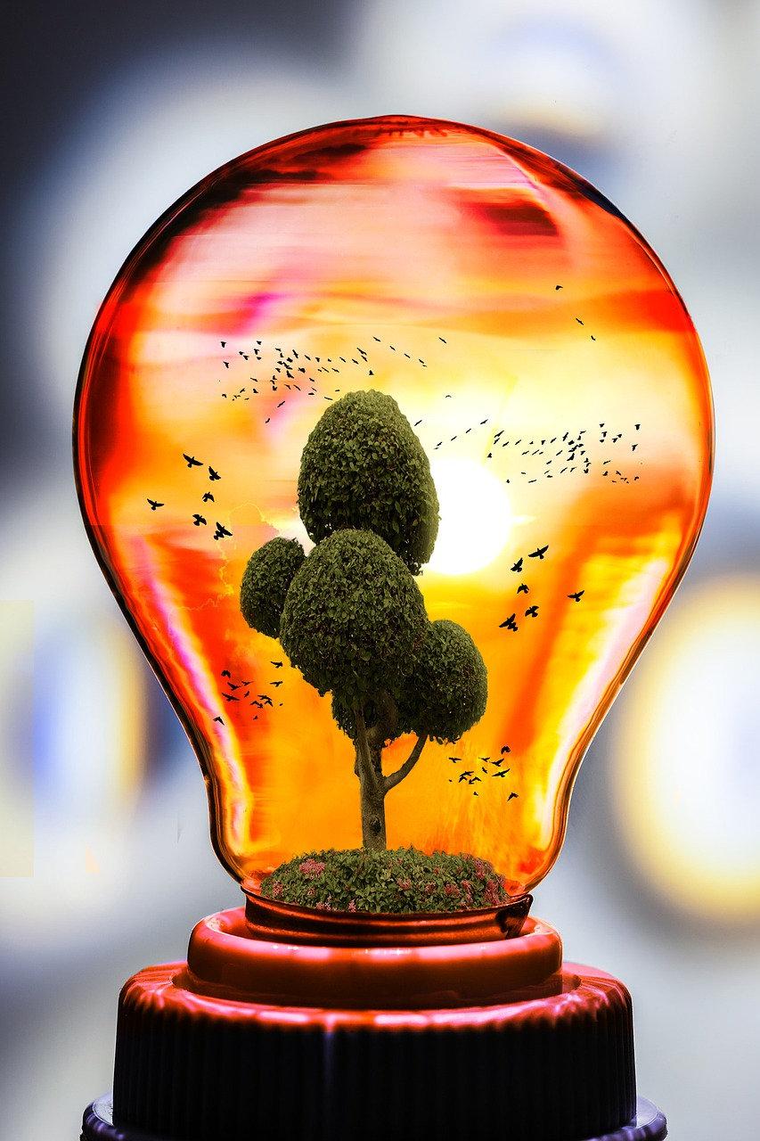 Bioénergie et Naturopathie