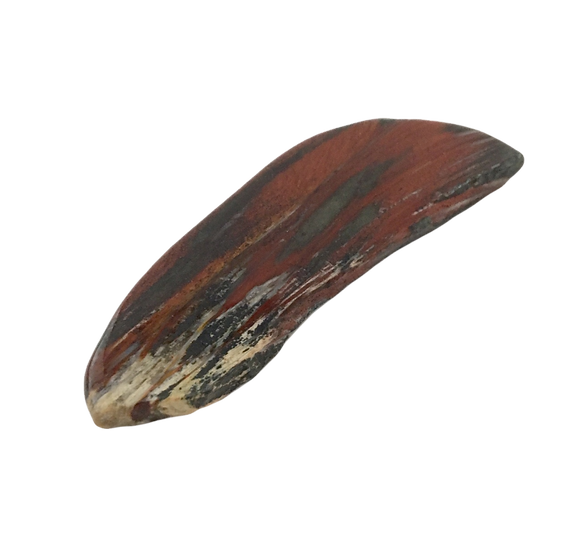 Fortunate Silkstone/ Binghamite - Rare Agate Polished Slab