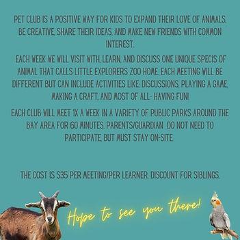 Copy of Virtual Pet Club instagram post 1.jpg