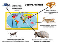 desert animals map of the world.jpg