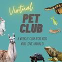 Virtual Pet Club instagram post 1.jpg