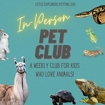 Copy of Virtual Pet Club instagram post 1.png