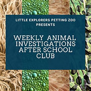 Weekly animal investigations thumbnail.j
