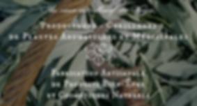 plantes_potions_1.png