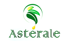 logo-asterale-header.png