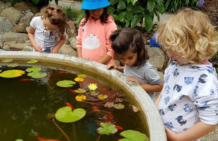 Children looking after fish. School holiday programme.
