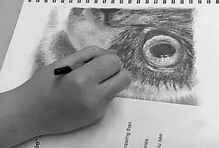 hilda-van-netten-drawing3.png