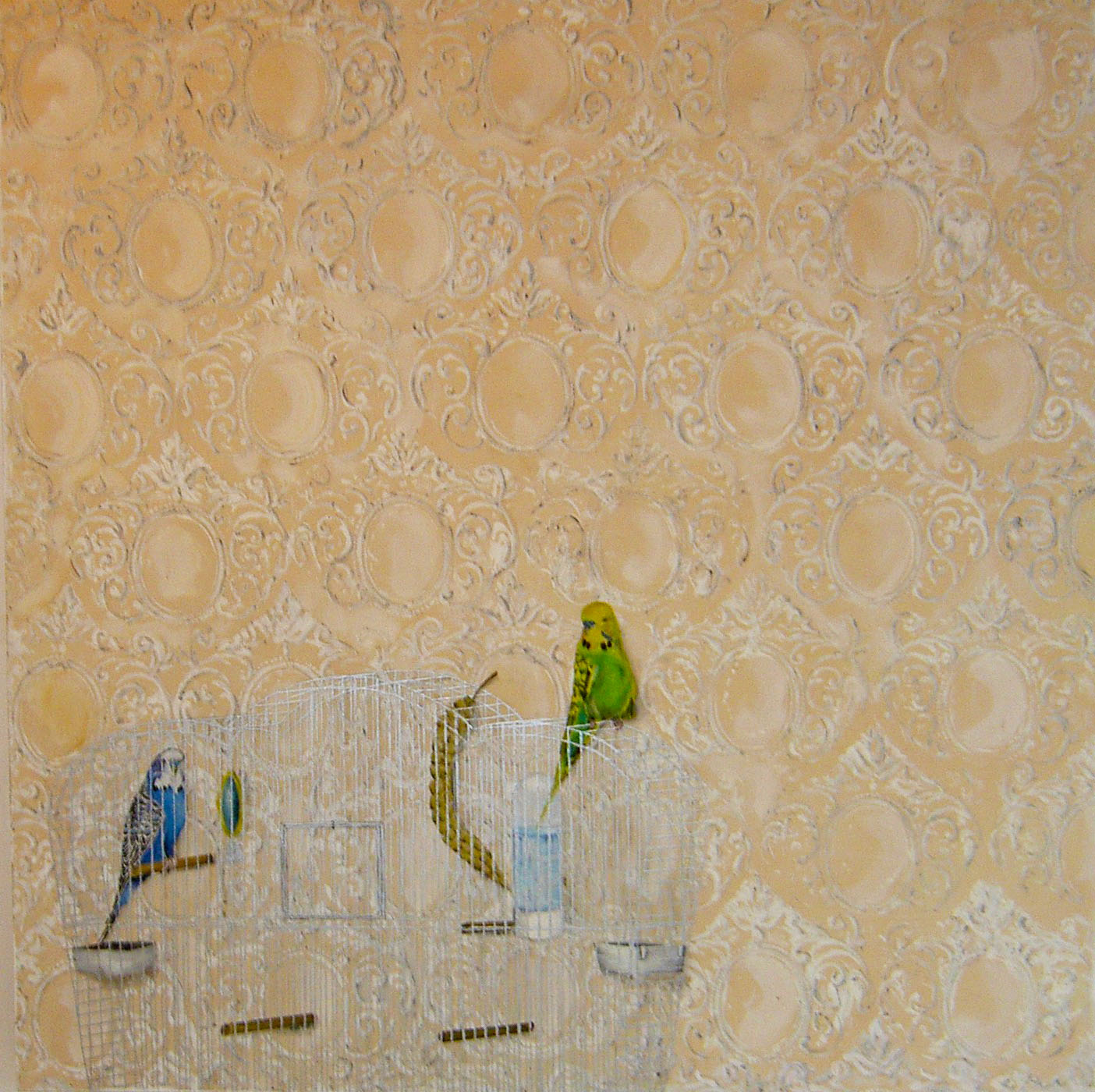 Budgie Cage and Wallpaper
