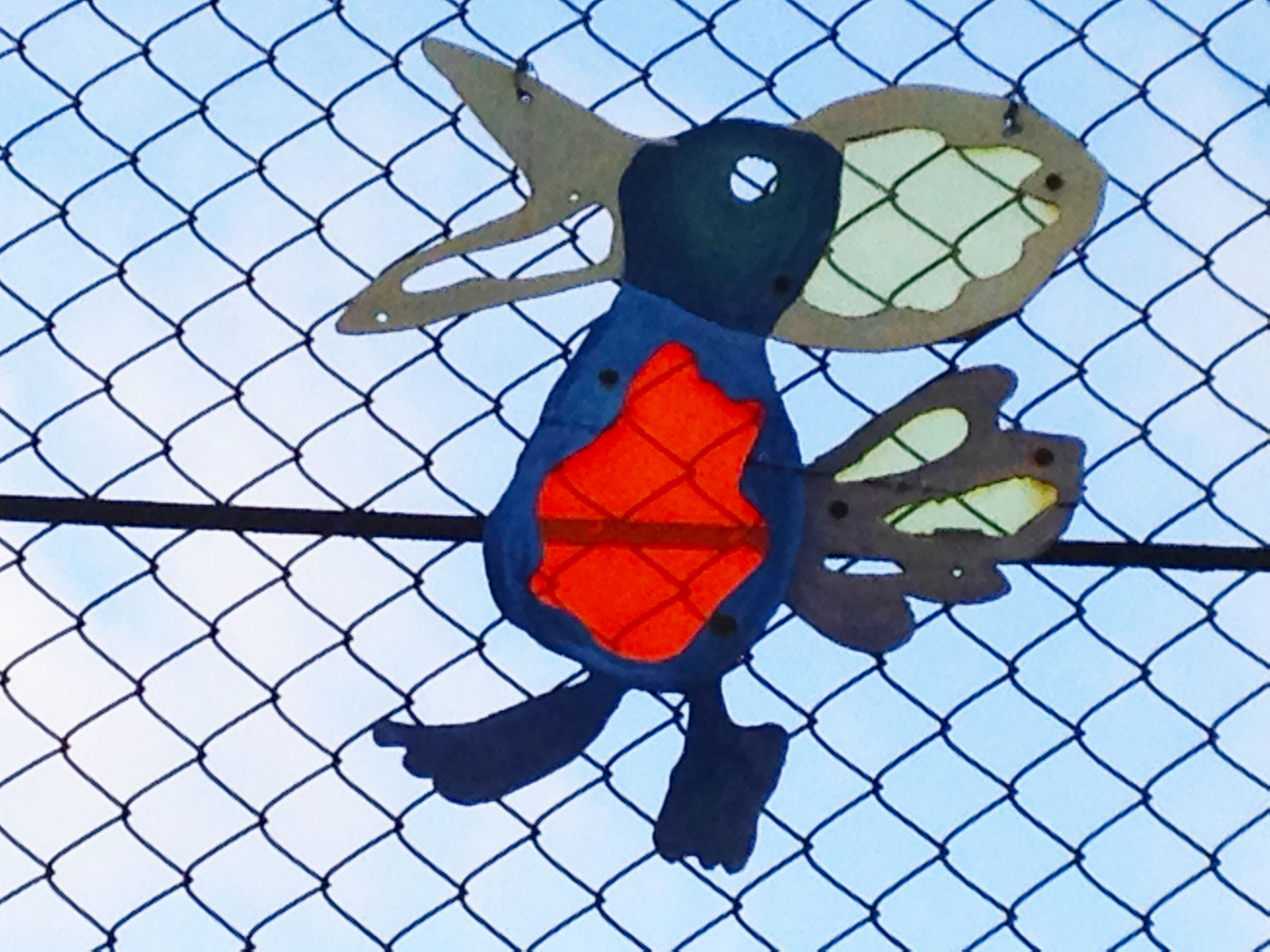 Eleanor Palmer Bird Fence