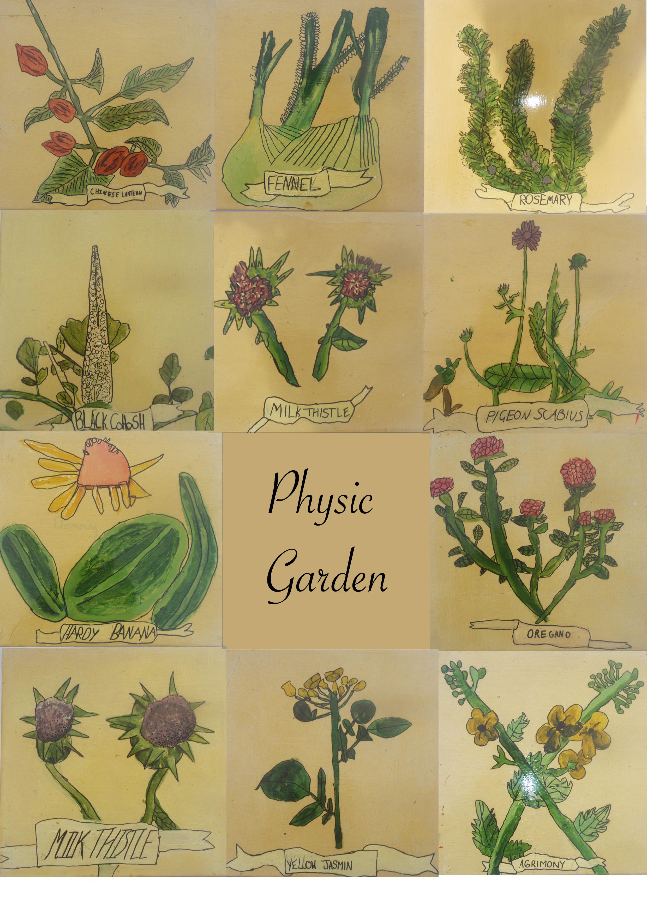 Physic Garden