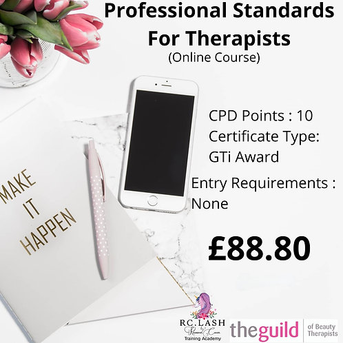Professional Standards For Therapists GTi