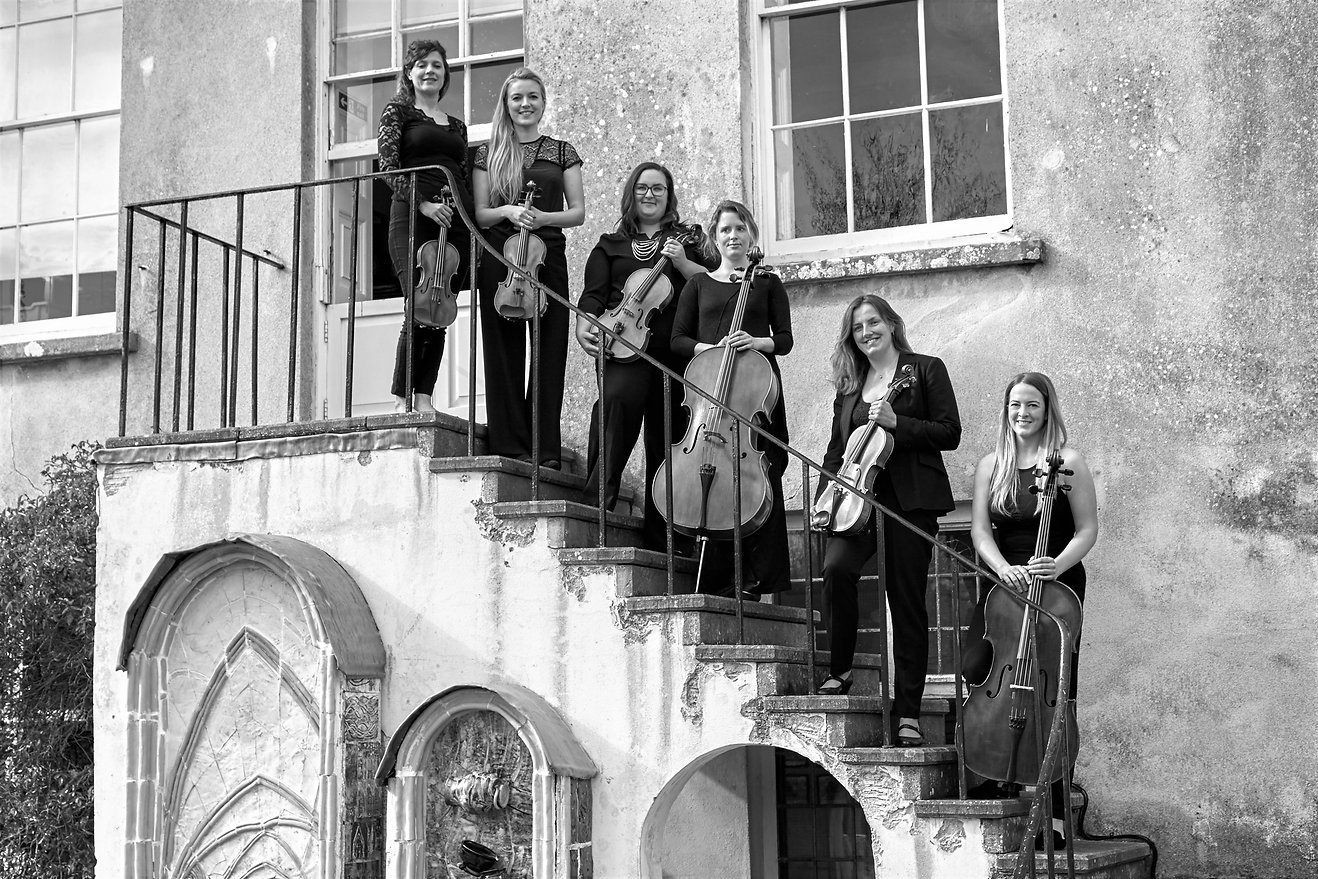 Musicians standing on steps holding violins, violas and cellos